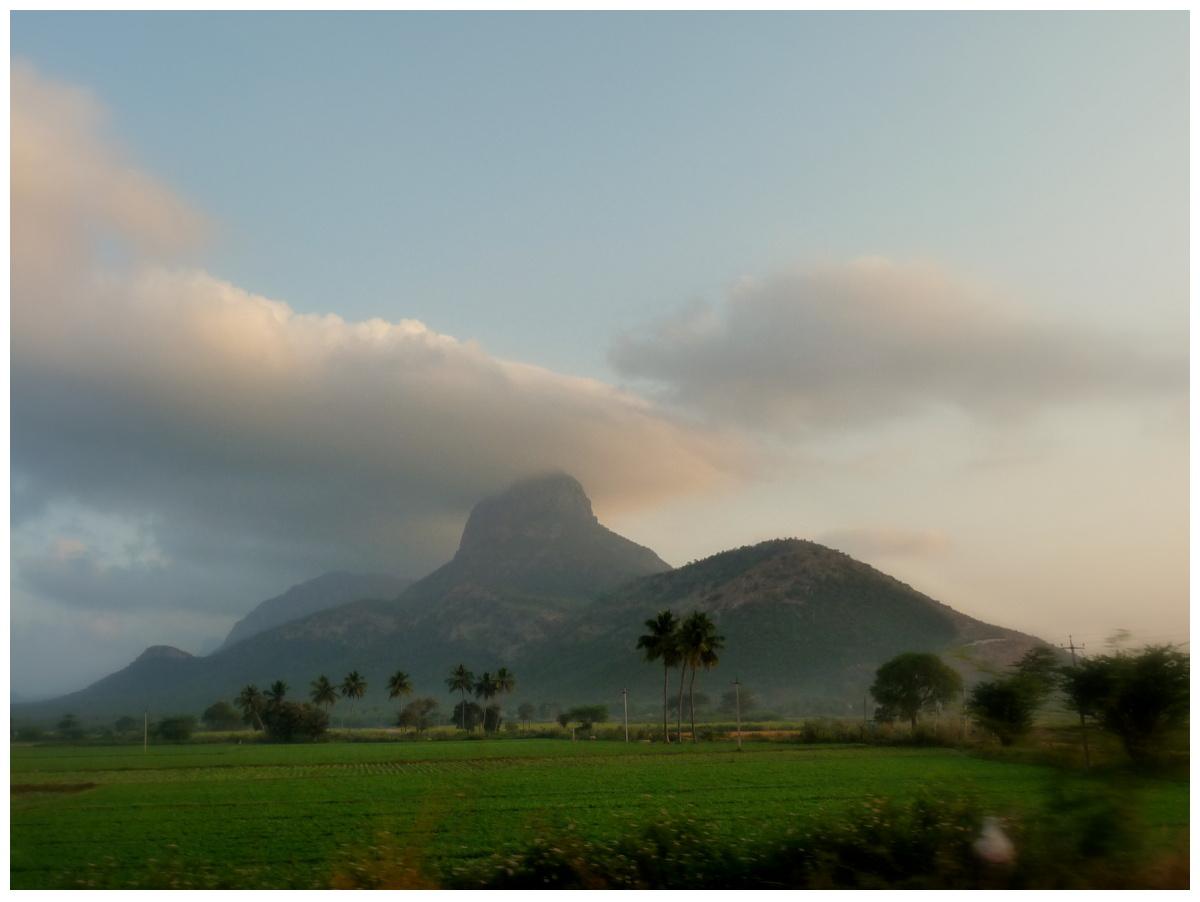 Image Source Sundarns